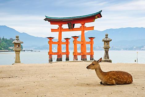 Île Miyajima