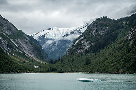 Fjord Tracy Arm, Alaska