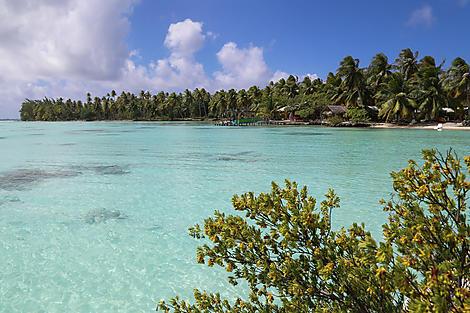 Rangiroa, Tuamotu Islands