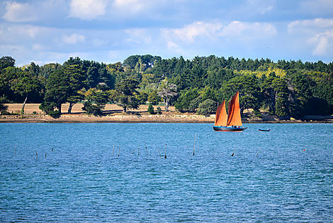 Gulf of Morbihan
